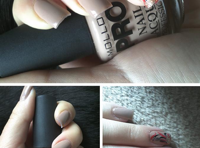Review: Mollon PRO nail lacquer professional nº119